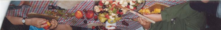 Fruitsalade bij plattekaas
